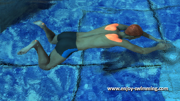 A breaststroke swimmer at the beggining of the propulsive phase of the kick.