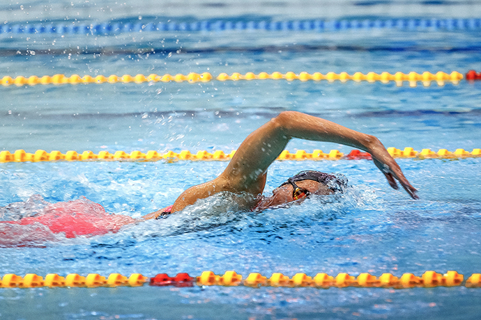 Focus on the above water arm recovery in the front crawl